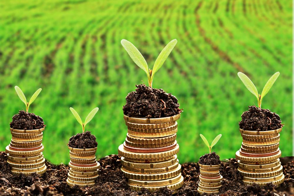 Ondernemen met financieel inzicht